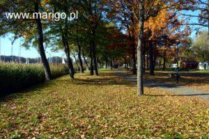 alejka-kei-rezydenckich-w-porcie-sztynort-jesień